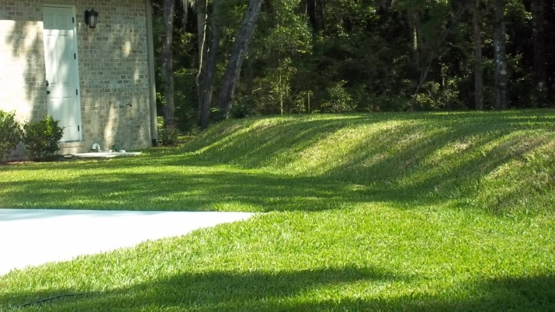 Green Grass Over The Septic Tank And Drain Field